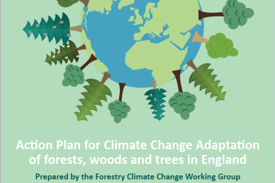 Action-Plan-for-Climate-Change-Adaptation-of-forests-woods-and-trees-in-England