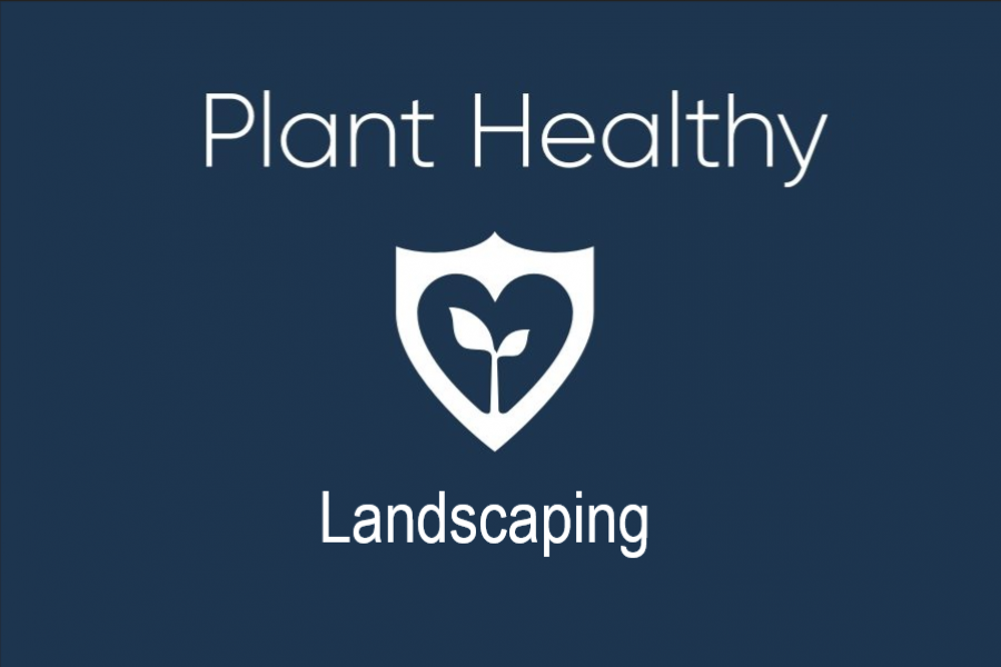 Plant-healthy-landscaping
