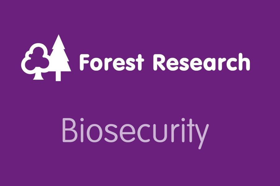 Thumbnail Forest Research